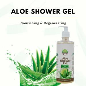 Aryan Aloe Shower Gel