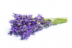 6. lavender
